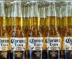 """""""Wirus piwa Corona"""". Gigantyczne straty producenta przez koronawirusa"""