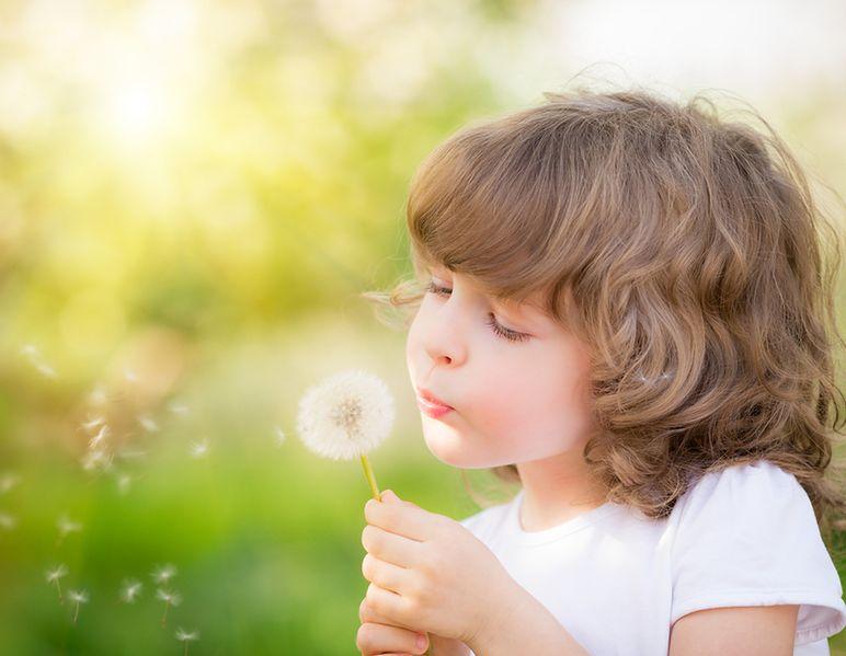 Powszechność alergii