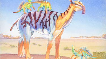 Evolution - czy gdyby dodo miało zęby, to by wyginęło?