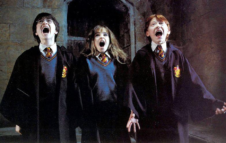 """Śląsk. Usunęli """"Harry'ego Pottera"""" ze szkolnych lektur. Miał zatruwać dusze dzieci"""