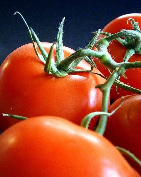 Całe pomidory