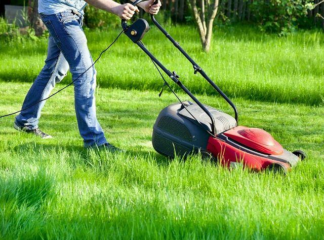 Zapach koszonej trawy na rozluźnienie
