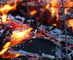 Polak zatrzymany w Czarnogórze. Podpalił las?