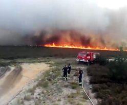 Pożar na poligonie w Świętoszowie. Wichura rozniosła ogień