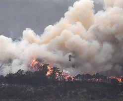 Pogoda w Australii. Przewidywane kolejne burze i wzrost temperatur