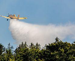 Drawsko Pomorskie. Pożar lasu na poligonie. 30 zastępów straży w akcji