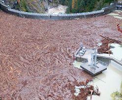 Tragedia na Sycylii. Woda z błotem zalała dom. Zginęło 9 osób, w tym dzieci