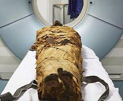 Jak brzmi mumia? Naukowcy odtworzyli głos zmumifikowanego kapłana