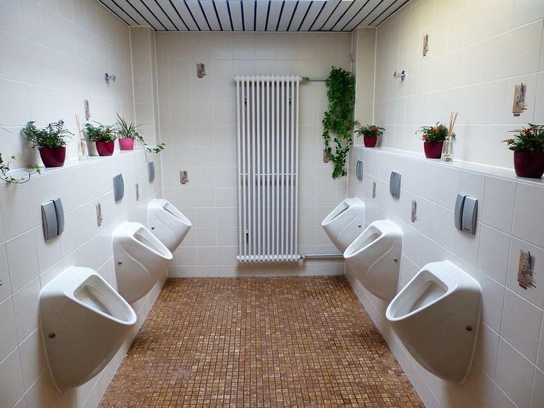 Wspólne toalety w szkole kością niezgody. Rodzice protestują