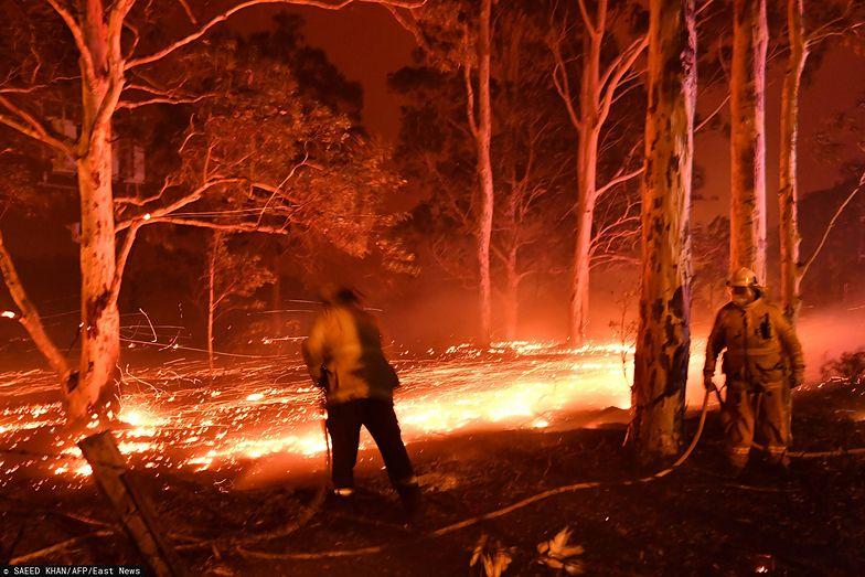Australia. Z pożarami w Nowej Południowej Walii walczy 3,6 tys. strażaków