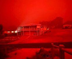 Australia w ogniu. Tysiące ludzi uwięzionych na plażach