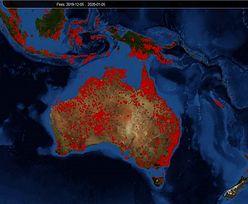 Australia. Powstała wizualizacja pożarów. Widok jest przerażający