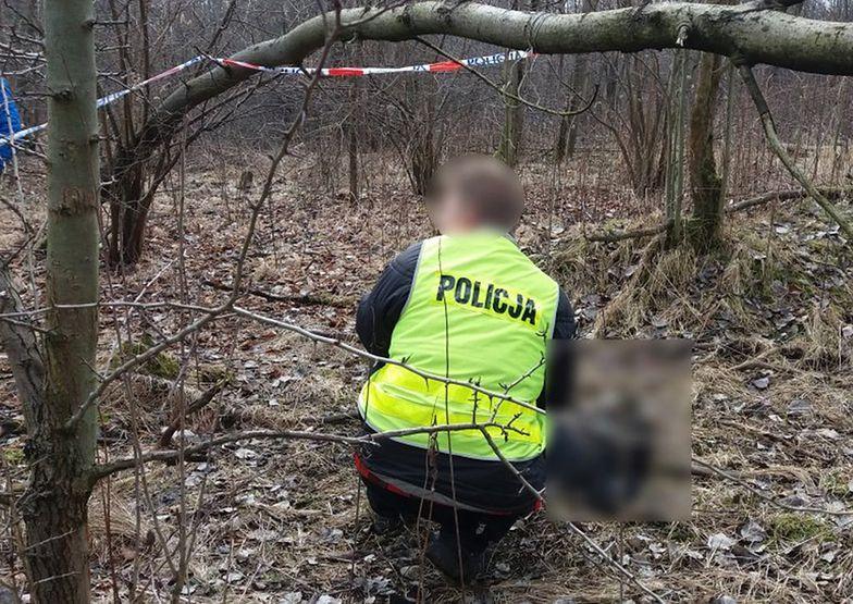 Znalazł zwłoki w lesie. Pomoże rozwiązać sprawę sprzed roku