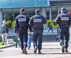 Komisariat w Paryżu został zamknięty z powodu inwazji pcheł