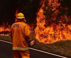 Australia. Dopadli 12-letnich podpalaczy