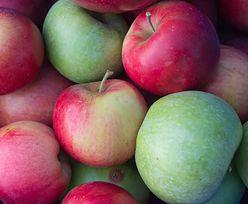 Cała prawda o jabłkach, czyli po co powstają nowe odmiany
