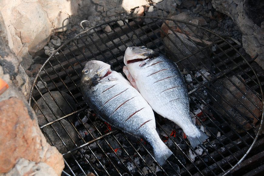Dieta wysokobiałkowa - ryby