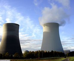 """Niemcy i Szwajcaria odłączają z sieci elektrownie atomowe. """"Każdy taki krok to sukces"""""""