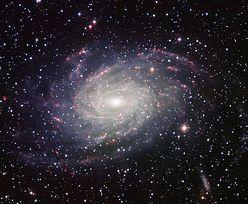 Nowy rekord obserwacji w Drodze Mlecznej