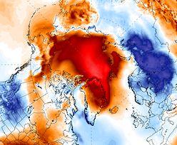 Na Arktyce cieplej niż w Polsce. Nawet 30 stopni powyżej średnich temperatur