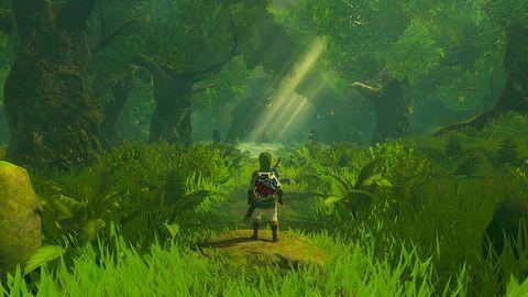 Pograłbym w TAK wyglądające Breath Of The Wild. Na emulatorze na PC
