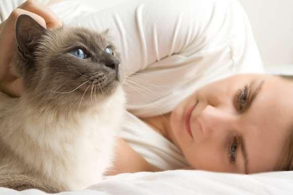 Zwierzęta poprawiają nam samopoczucie