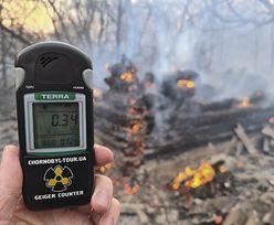 Pożar lasu w Czarnobylu. Promieniowanie 16-krotnie przekroczyło normę