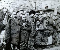 Największa ucieczka Polaków z Auschwitz-Birkenau. Zemsta Niemców była przerażająca