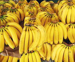 Kokaina przypłynęła w bananach. Bułgarzy ujawnili wielki przemyt