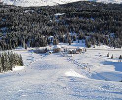 Wyjazdy Free Ski w Alpy