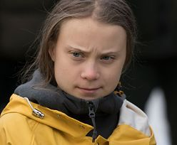 Greta Thunberg zaatakowała. Stanowcza odpowiedź polityka