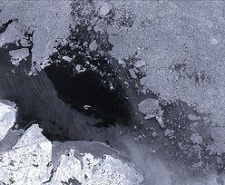 Najstarszy i najgrubszy lód na Arktyce pęka po raz pierwszy w historii
