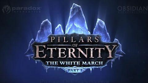 Krótka piłka: pierwsze rozszerzenie do Pillars of Eternity z datą premiery