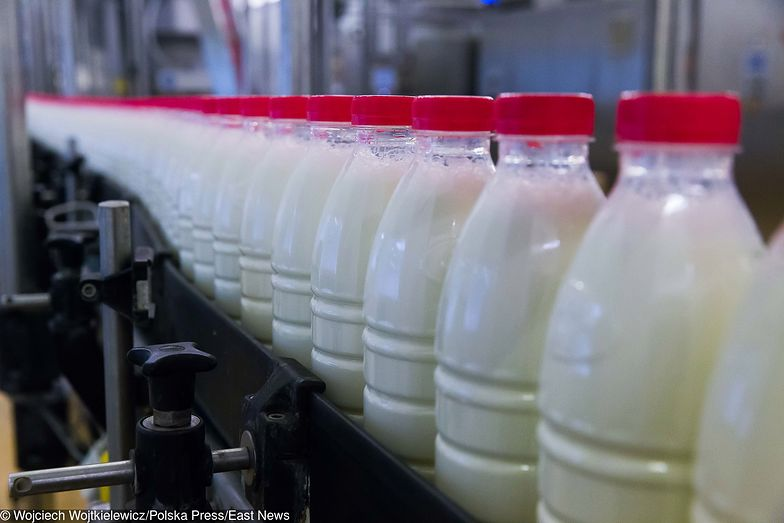 11 osób zatrzymano za dolewanie mleka do wody w spółdzielni mleczarskiej w Gostyniu (zdjęcie ilustracyjne)