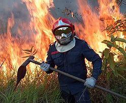 #UgaśmyPłucaŚwiata. Pożary w Amazonii. Twarde dane. Czy powinniśmy martwić się o tlen?