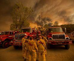 Pożary w Kalifornii. 40 ofiar śmiertelnych