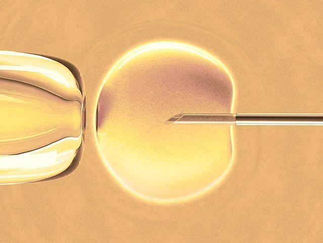 Ilustracja obrazująca zapłodnienie in vitro