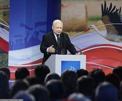 """Wybory 2019. Konwencja PiS w Stalowej Woli. Jarosław Kaczyński ostrzega przed """"Koalicją Chaosu"""""""