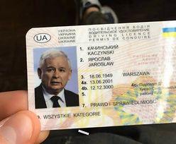 """Prawo jazdy Jarosława Kaczyńskiego do kupienia. """"Chodzi po 3 zł na Ukrainie"""""""