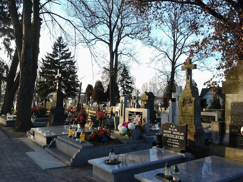Orkan Grzegorz może połamać stare drzewa na poznańskich cmentarzach.