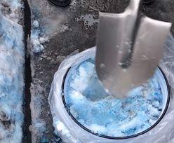 Niebieski śnieg w Petersburgu. Mieszkańcy mają swoją teorię