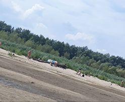 Plaża dla nudystów w Warszawie. Byliśmy tam. W weekend jest tu ponad 200 osób