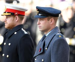 Książę William i książę Harry opublikowali wspólne oświadczenie