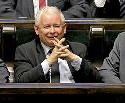 Sondaż: PiS z rekordowym wynikiem, opozycja wciąż w kryzysie