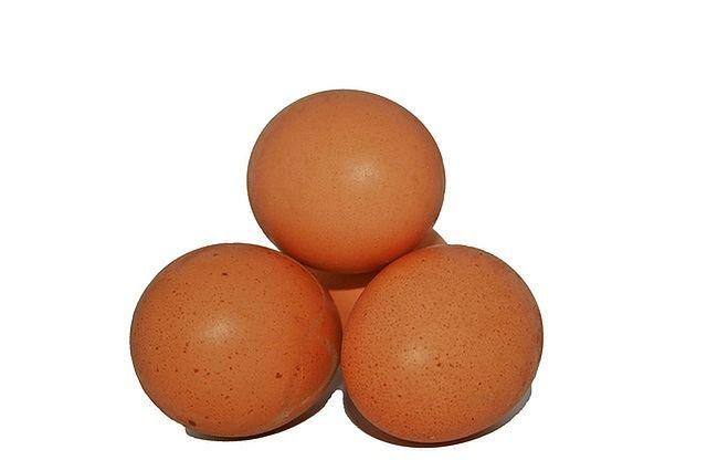 Białko jaj