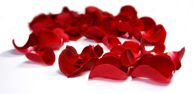 Tonik z róży