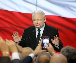 Wygrana PiS w wyborach zaskoczyła Polaków? Wynik opozycji w Senacie był dla wielu niespodzianką [BADANIE]