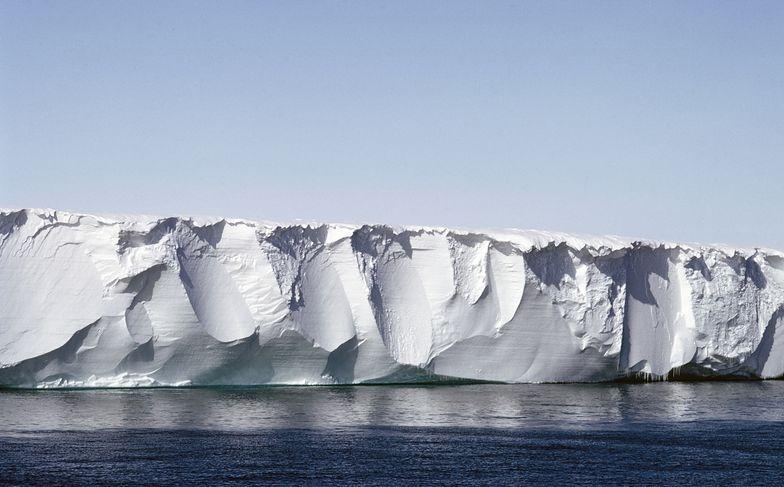 lodowiec szelfowy rossa