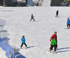 Zakopane. Wjechali audi na trasę biegową dla narciarzy. Zawinił GPS