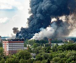 Seria pożarów w Polsce. Do akcji wkracza Rada Ministrów